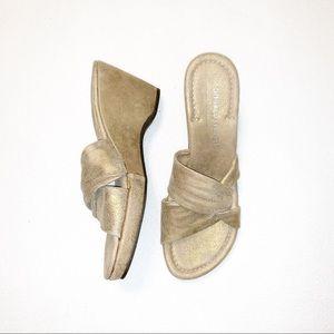 Donald J. Pliner Vivi Metallic Wedge Sandals 9N
